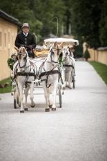 Hochzeit in Österreich_11